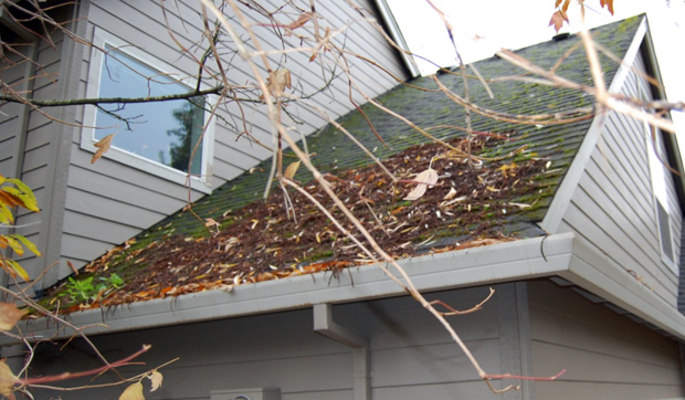 Cleaning the roof of debris is part of exterior spring maintenance.
