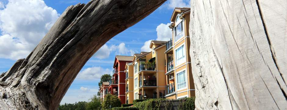 Slight price increases in December finished a busy year in real estate in New Westminster